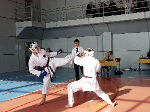 Игры  каратэ  ДВФО